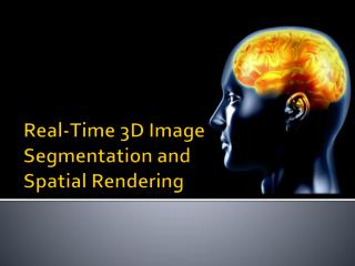Real-Time 3D Image Segmentation and  Spatial Rendering