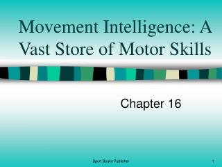 Movement Intelligence: A Vast Store of Motor Skills