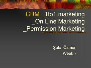 CRM _ 1to1 marketing _On Line Marketing _Permission Marketing
