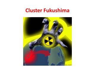 Cluster Fukushima