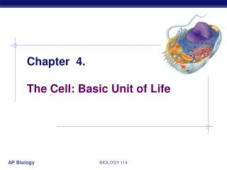 Chapter  4. The Cell: Basic Unit of Life