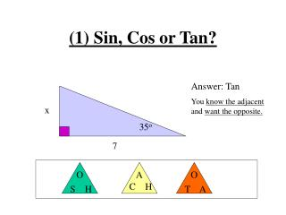 (1) Sin, Cos or Tan?