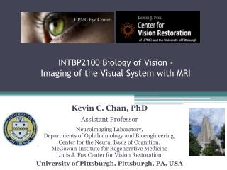 INTBP2100 Biology of Vision -  Imaging of the Visual System with MRI