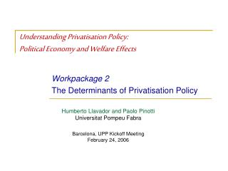 Understanding Privatisation Policy: Political Economy and Welfare Effects