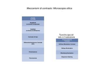 Meccanismi di contrasto: Microscopia ottica