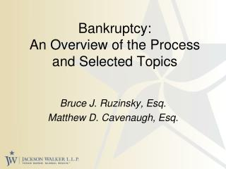 Bankruptcy:  An Overview of the Process and Selected Topics