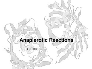 Anaplerotic Reactions