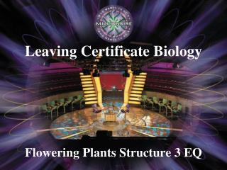 Flowering Plants Structure 3 EQ