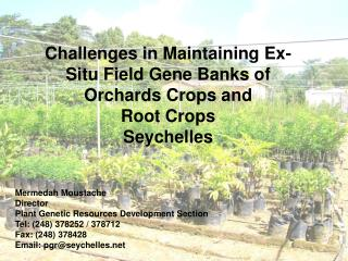 Challenges in Maintaining Ex-Situ Field Gene Banks of Orchards Crops and  Root Crops  Seychelles