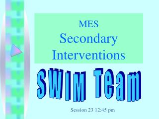 MES Secondary Interventions