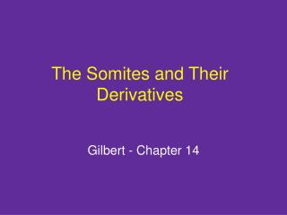 The Somites and Their Derivatives