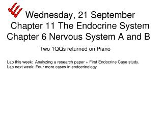Wednesday, 21 September Chapter 11 The Endocrine System Chapter 6 Nervous System A and B