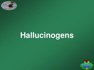 Ppt Hallucinogens Powerpoint Presentation Id 1845226