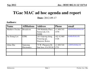 TGac  MAC ad hoc agenda and report