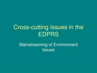 Cross-cutting Issues in the EDPRS