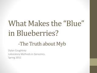 "What Makes the ""Blue"" in Blueberries? -The Truth about  Myb"