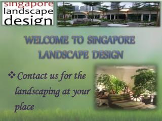 Looking For Garden Landscape in Singapore