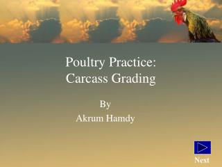 Poultry Practice: Carcass Grading
