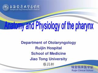 Department of Otolaryngology Ruijin Hospital School of Medicine Jiao Tong University 蔡昌枰