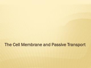 The Cell Membrane and Passive Transport