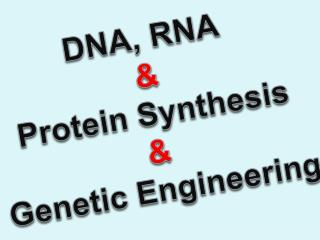 DNA, RNA & Protein Synthesis & Genetic Engineering