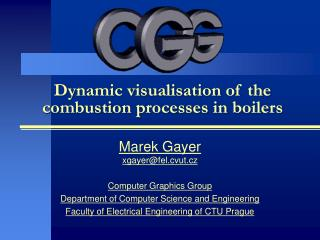 Dynamic visualisation of the combustion processes in boilers