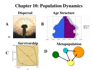 Chapter 10: Population Dynamics