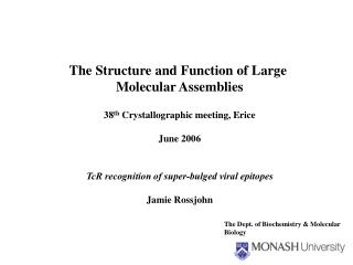 The Structure and Function of Large  Molecular Assemblies 38 th  Crystallographic meeting, Erice