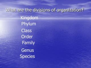 What are the divisions of organization?