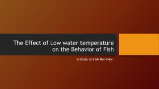The Effect of Low water temperature on the Behavior of Fish