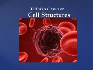 TODAY's Class is on… Cell Structures