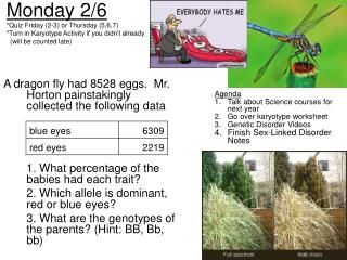 A dragon fly had 8528 eggs.  Mr. Horton painstakingly collected the following data