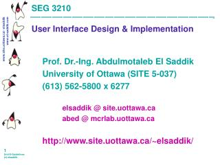 SEG 3210 User Interface Design & Implementation