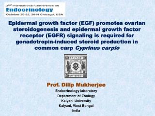 Prof. Dilip Mukherjee Endocrinology laboratory Department of Zoology Kalyani  University