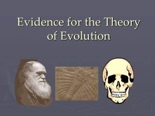 Evidence for the Theory of Evolution