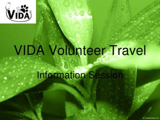 VIDA Volunteer Travel