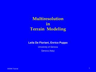 Multiresolution  in  Terrain  Modeling