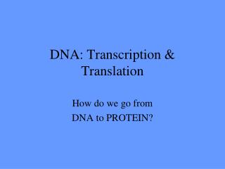 DNA: Transcription & Translation