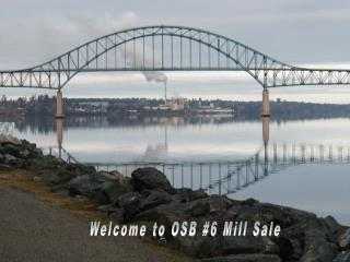 Welcome to OSB #6 Mill Sale
