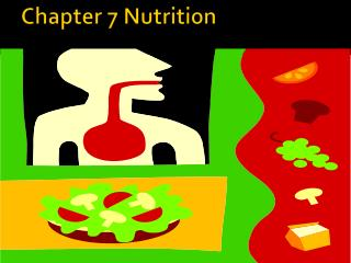 Chapter 7 Nutrition
