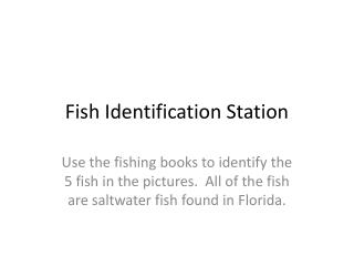 Fish Identification Station