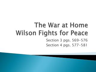 The War at Home Wilson Fights for Peace