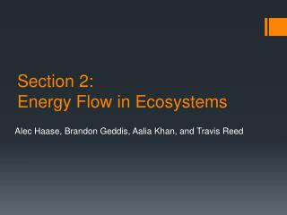Section 2: Energy Flow in Ecosystems