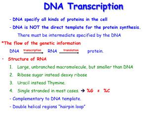 -  DNA specify all kinds of proteins in the cell