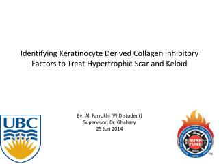 Identifying Keratinocyte Derived Collagen Inhibitory Factors to Treat Hypertrophic Scar and Keloid