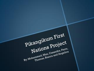 Pikangikum  First Nations Project