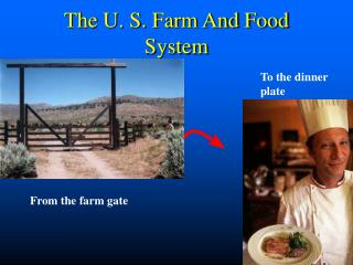 The U. S. Farm And Food System