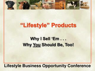 """""""Lifestyle"""" Products"""