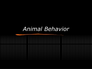 Plant and Animal Behavior