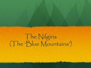 The  Nilgiris (The 'Blue Mountains')